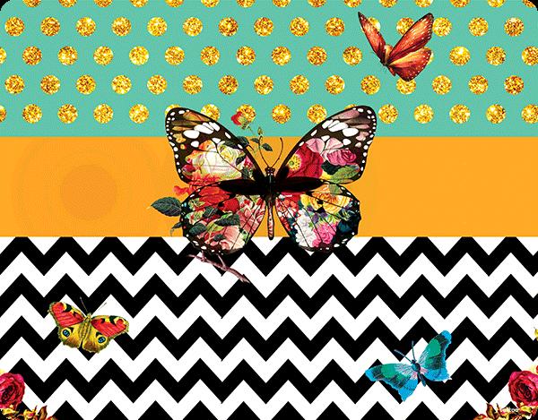 Butterfly Contrast