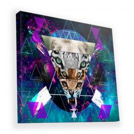Tiger Swag - Canvas Art 90x90