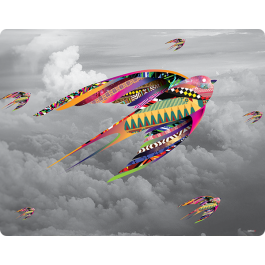 Flying Colors - Skin Telefon