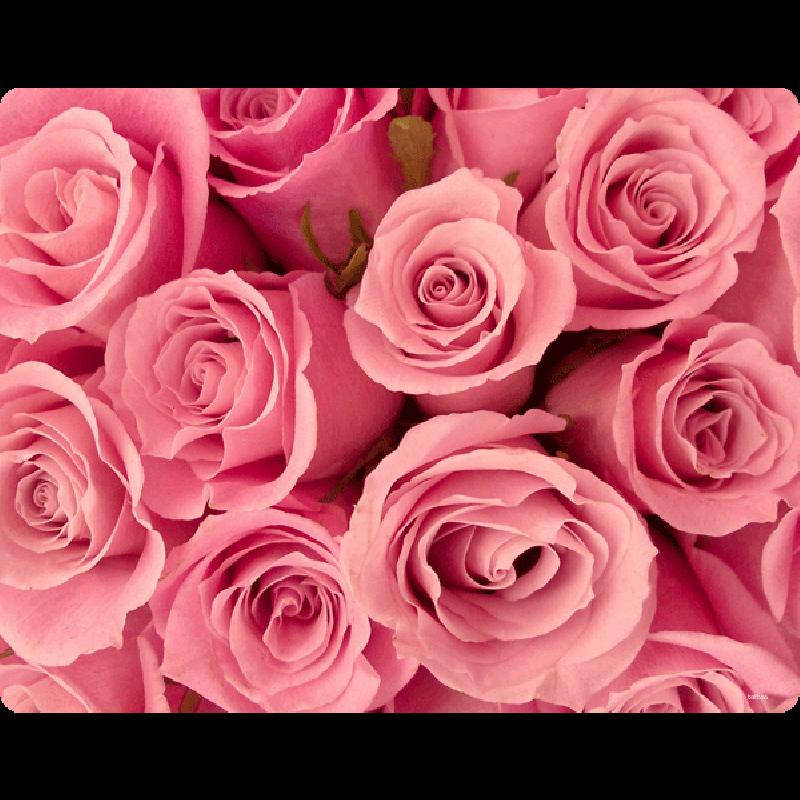 Roses are pink - Skin Telefon