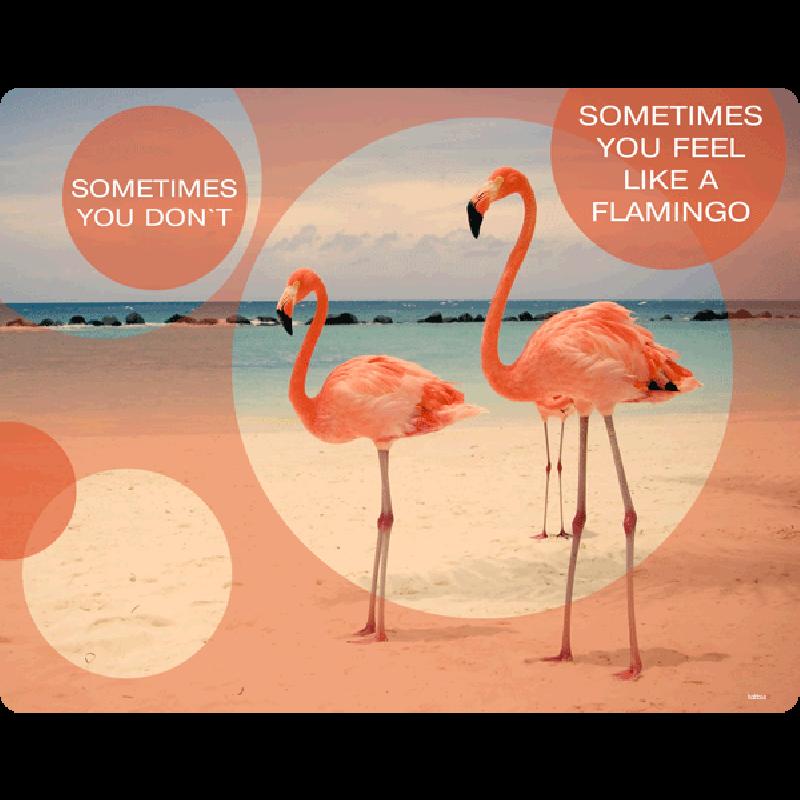 Flamingo Feeling - Samsung Galaxy S4 Carcasa Transparenta Silicon