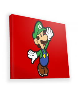 Luigi Two - Canvas Art 45x45