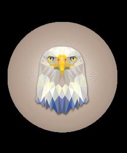 Popsocket Hawk, Accesoriu telefon