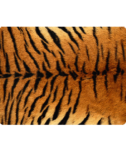 Tiger Fur - iPhone 6 Husa Book Alba Piele Eco
