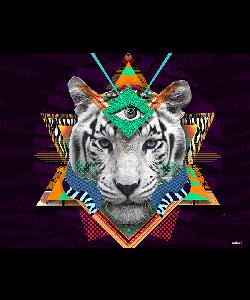 Eyes of the Tiger - Samsung Galaxy S4 Carcasa Transparenta Silicon