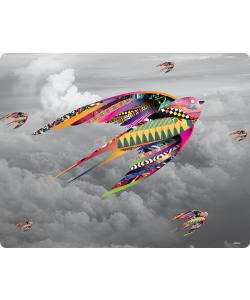 Flying Colors - iPhone 6 Plus Skin