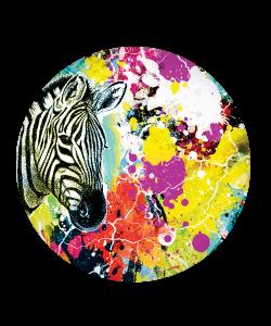Popsocket Zebra Splash, Accesoriu telefon