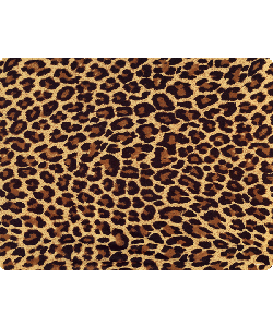 Leopard Print - Sony Xperia Z1 Carcasa Fumurie Silicon