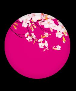 Popsocket Cherry Blossom, Accesoriu telefon