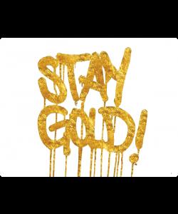 Stay Gold - Huawei P10 Lite Carcasa Transparenta Silicon