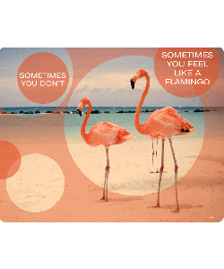 Flamingo Feeling